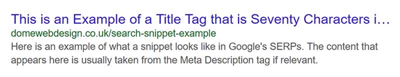 Search Snippet Example